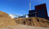 Bruksela pozwoli na spalanie drewna. Ale czy biomasa może zdrożeć?