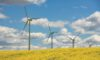 Budowniczy wiatraków i fotowoltaiki zawstydzi polskie koncerny energetyczne?